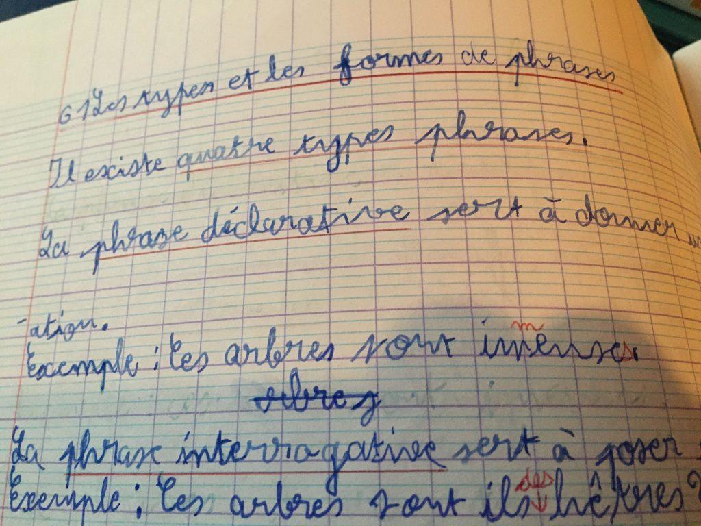 stage de français collège